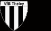 VfB 1919 Theley